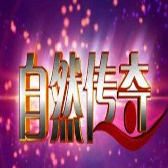 2019年CCTV-10《自然传奇》联合特约广告价格