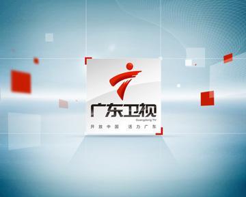 2020年广东卫视广告刊例价格表(白天)