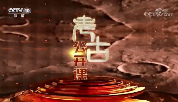 2020年CCTV-10《考古公开课》联合特约