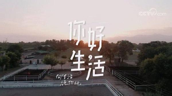 CCTV-3《你好生活》(第三季)独家冠名